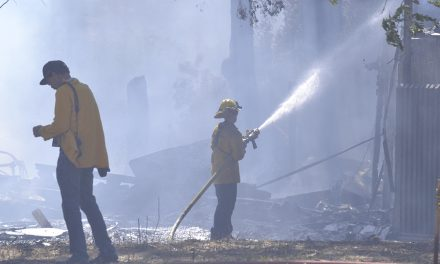 Paso Robles FD: Weed Abatement Cause of River Fire