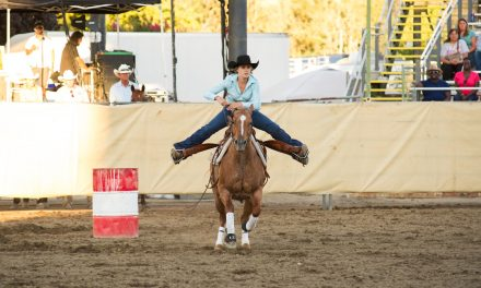 CMSF Horse Show Entries Due Friday, July 2