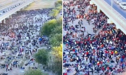Over 8,000 Mostly Haitian Migrants Waiting to Be Processed