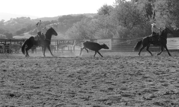 SLO County Cattlewomen Roping and Cattleman's Playday Returns