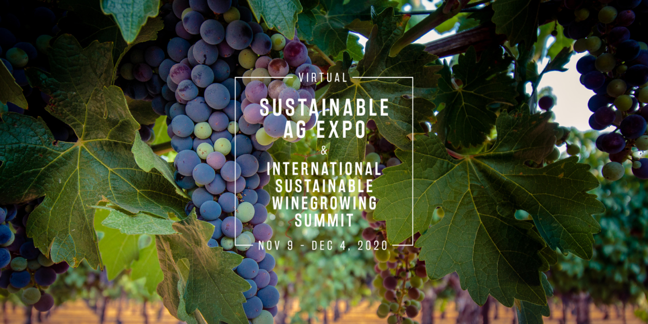 Registration Still Open for Virtual Ag Expo and International Sustainable Winegrowing Summit