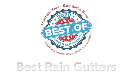 Best of 2020 Winner: Best Rain Gutters
