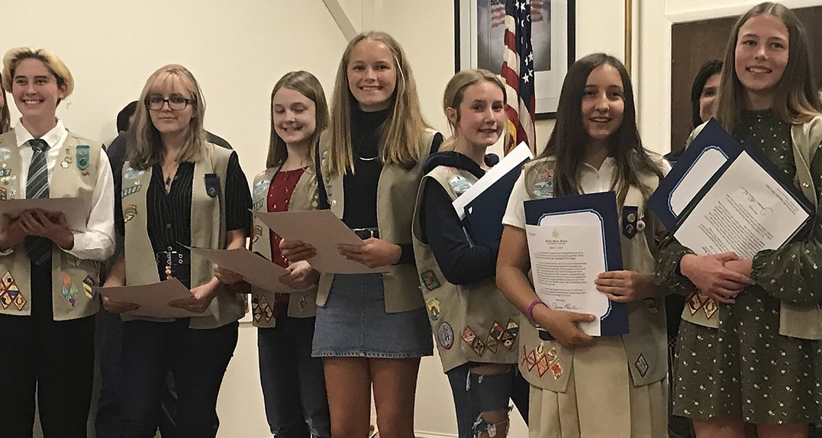 Scouts Receive High Honors for Achievements