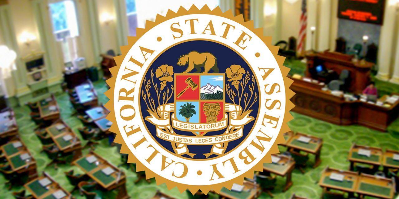 State Assembly Passes Police Sexual Assault Transparency Bill