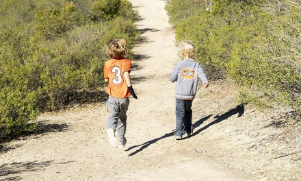 Forest Service Closes Recreation Sites through April 30