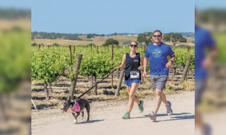 Dog Jog Finds New romping Grounds