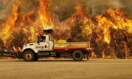 Dolan Fire Grows to 93,554 Acres, 20% contained