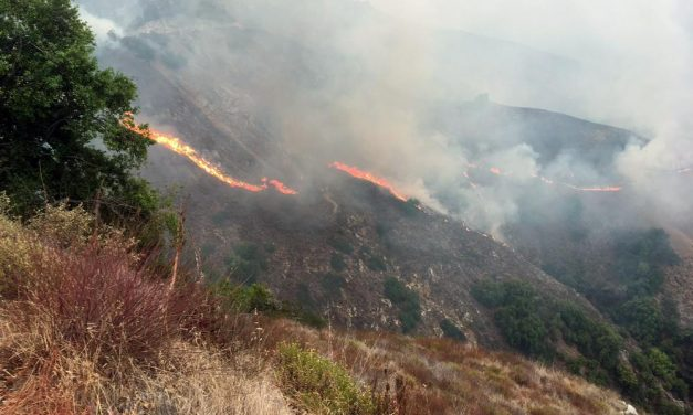 Dolan Fire Now Over 110,000 Acres, 26% contained