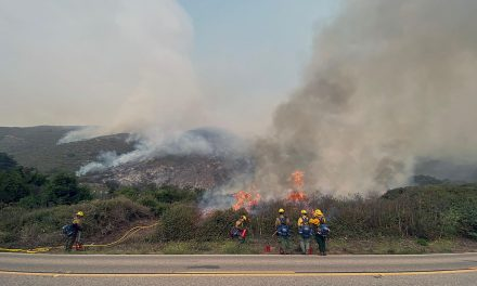 Containment of Dolan Fire Remains at 40 Percent