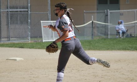 Greyhound Softball Gaining Confidence