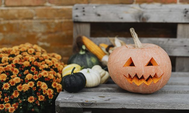 SLO County Health Officer Issues Guidance for Safer Halloween Activities During COVID-19