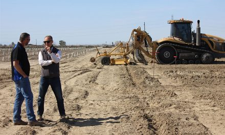 Guest Column: Ag Week Highlights Farmers' Resilience