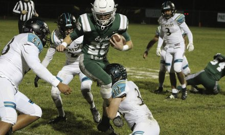 Eagles Fall in Quarterfinals