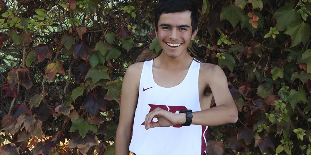 Boys Cross Country Runner of the Year: Damian Gavilan