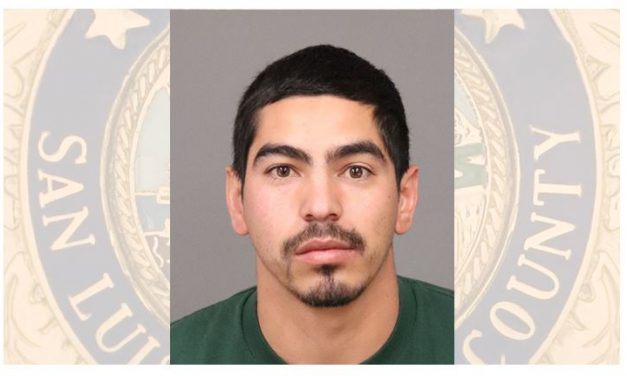 Felony Domestic Violence Suspect Arrested