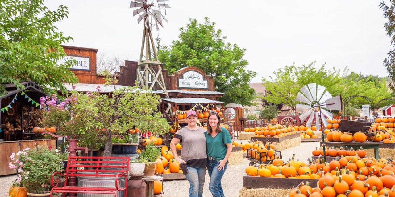"""Jack Creek Farm Announces their """"Pumpkin Palooza"""" and """"Field Trip in a Box"""""""