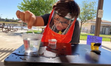 Science-Dipity to Offer Hands-On Social Distance Science Classes at Centennial Park this Fall