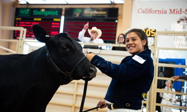 California Mid-State Fair Livestock Virtual Auction Begins July 22