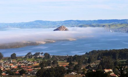 SLO County Officials Expect Regional Stay-at-Home Order to Begin This Weekend