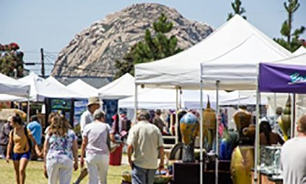 Art in the Parks — From Morro Bay to Paso Robles