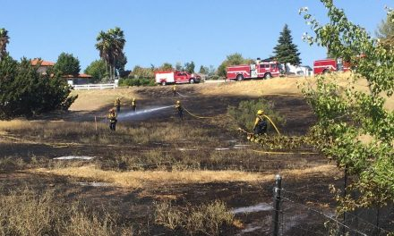 July 17 Vegetation Fire and Weed Abatement Update