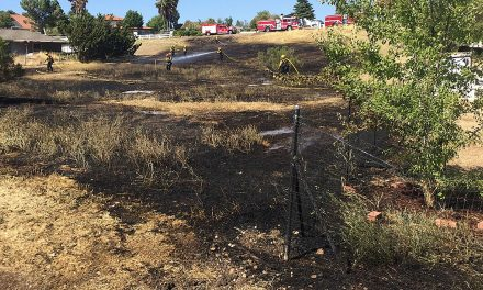 PRFD: Fire Burns Less Than Acre Near Osos Way, Vista Grande