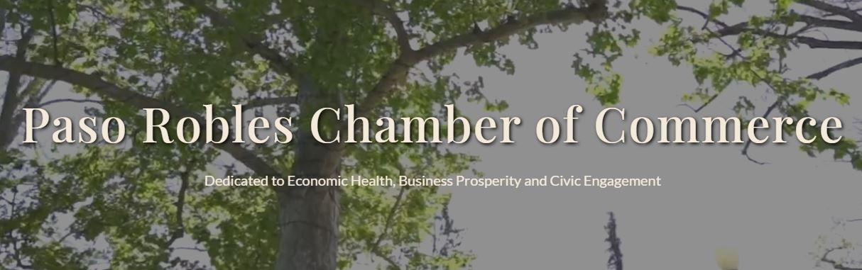 Stroud Joins the Chamber as the New Government Affairs and Public Policy Coordinator