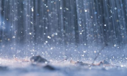 Rain and Possible Thunderstorms Throughout Wednesday