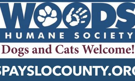 California's 'Pandemic Puppies' Prepare for a 'Post-COVID' World