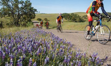 CSCCC 12th Annual Tour of Paso Rescheduled