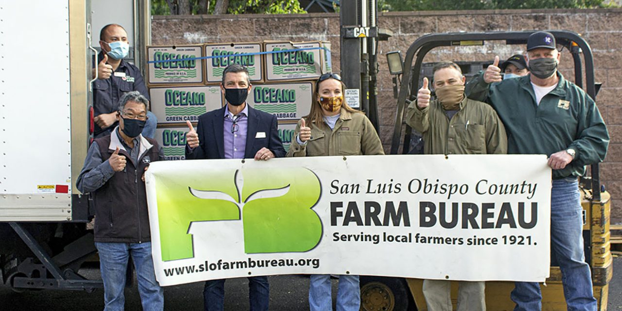 Farm Bureau and Pismo Oceano Vegetable Exchange Revive Tradition in Memory of Deceased Board Member to Support SLO Food Bank