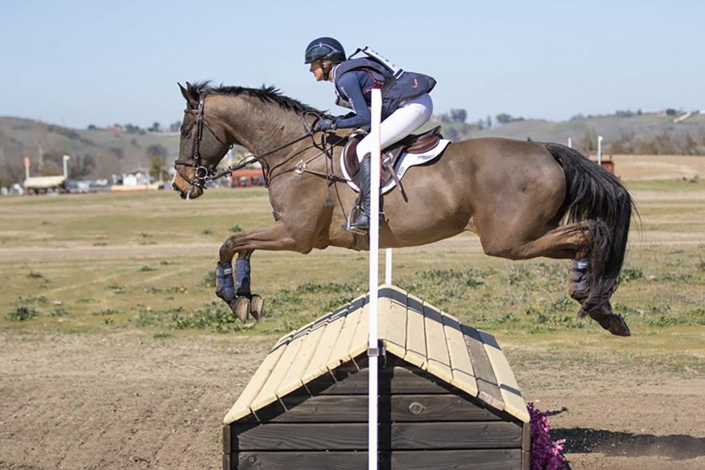 Twin Rivers Horse Equestrian