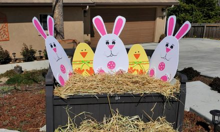 Virtual Egg Hunt Brings Community Together for the Second Year