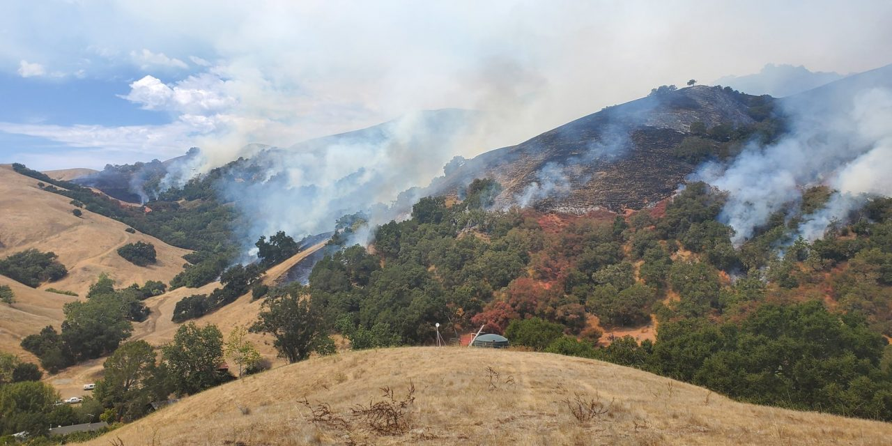 Cal Fire SLO Working to Contain Whale Fire