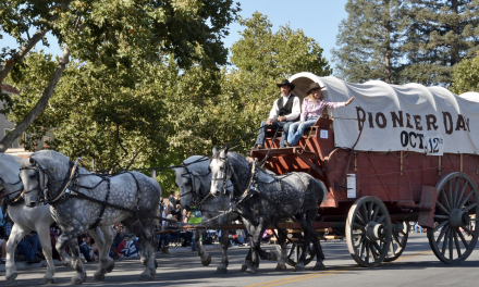 Pioneer Day Festivities Will Return This Year
