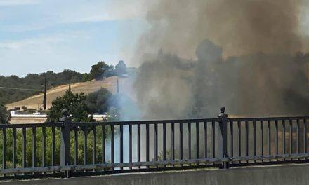 Riverbed Vegetation Fire