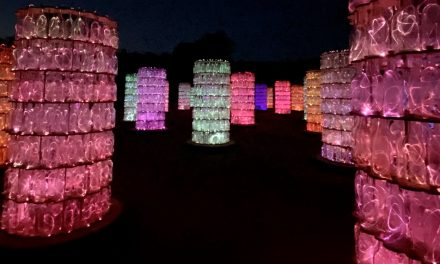 Sensorio Field of Lights Re-Opens with Newly Added Light Towers